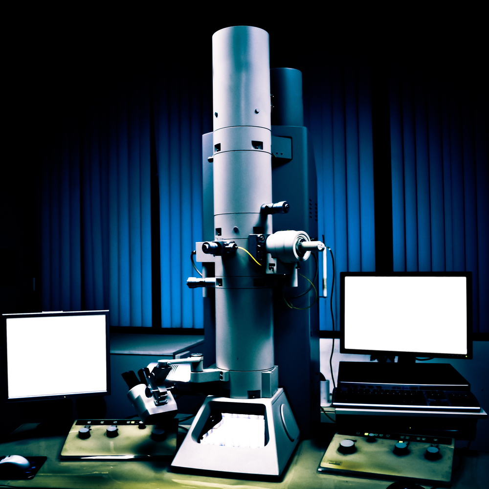 Electron microscopy – a glimpse at the world in detail